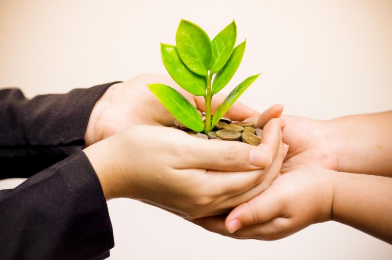 Etika v podnikání: Ekologie